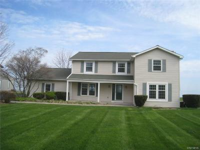 Niagara County Single Family Home A-Active: 805 Lake Road