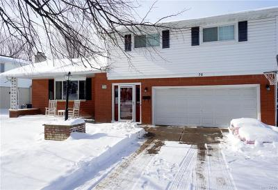 Erie County Single Family Home A-Active: 76 Ranch Trail