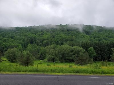 Ellicottville Residential Lots & Land A-Active: Maples Road