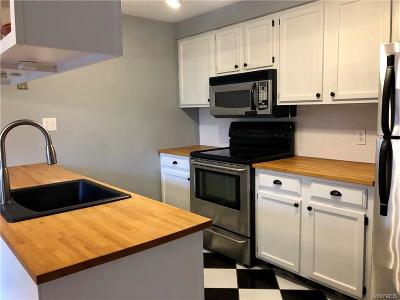 Amherst Condo/Townhouse A-Active: 154a Charter Oaks Drive #A