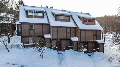 Ellicottville Condo/Townhouse For Sale: 6 Centerline- The Woods