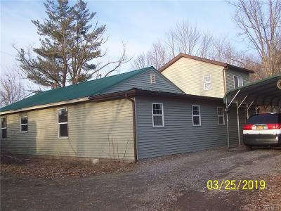 North Collins Single Family Home For Sale: 12531 Gowanda State Road