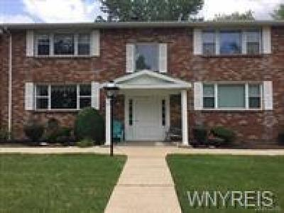 Amherst Condo/Townhouse A-Active: 85 Old Lyme Drive #2