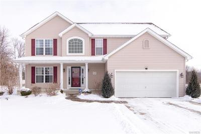 Niagara County Single Family Home C-Continue Show: 7039 Iroquois Drive