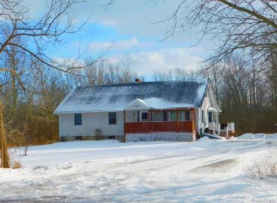 Niagara County Single Family Home A-Active: 8414 Dale Road