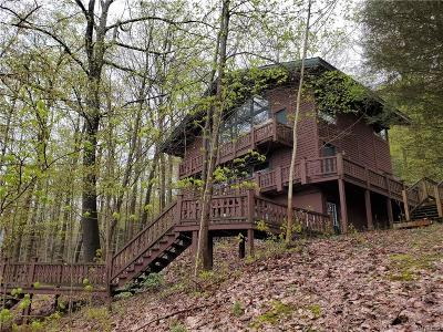 Ellicottville Single Family Home For Sale: 17 Four Wheel Drive