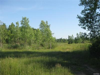 Genesee County Residential Lots & Land A-Active: V/L Main Road