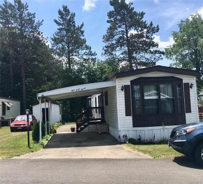 Allegany Single Family Home U-Under Contract: 3974 Route 417
