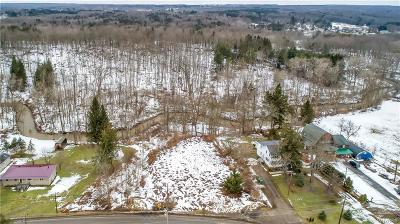 Erie County Residential Lots & Land A-Active: Vl Savage Road