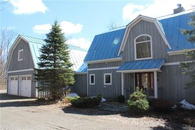 Ellicottville Single Family Home A-Active: 6484 Watson Hill Road Lane