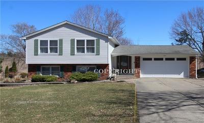 Amherst Single Family Home A-Active: 295 Lakewood Parkway