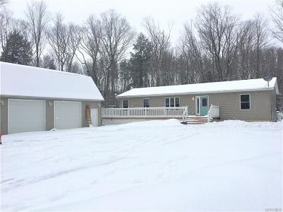 Colden Single Family Home A-Active: 8728 Blanchard Road