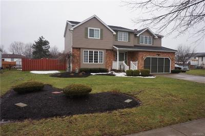 Lancaster Single Family Home A-Active: 20 Country Place
