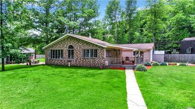 Allegany County, Cattaraugus County Single Family Home A-Active: 8247 Parkside Drive