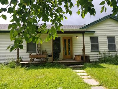Orleans County Single Family Home A-Active: 13102 Stillwater Road