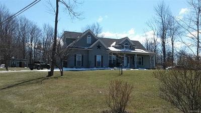Erie County Single Family Home A-Active: 659 Sturgeon Point Road