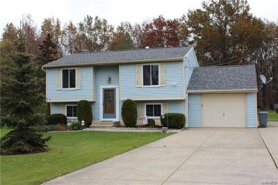 Grand Island Single Family Home A-Active: 2121 Meadow Lane