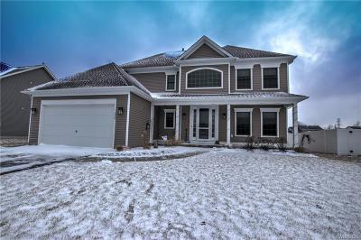 Buffalo NY Single Family Home A-Active: $415,500