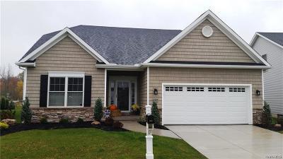 Single Family Home A-Active: 9061 Bancroft Drive