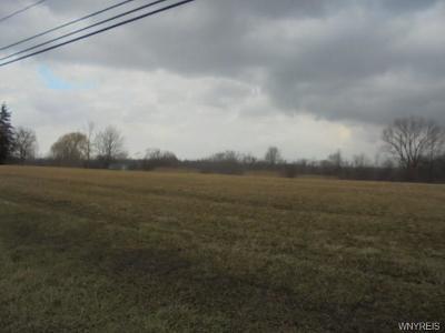 Niagara County Residential Lots & Land A-Active: 4723 Ridge Road