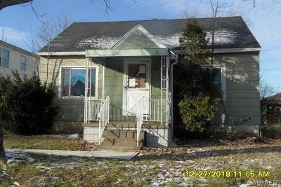 Cheektowaga Single Family Home A-Active: 46 Awood Place