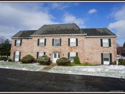 Amherst NY Condo/Townhouse U-Under Contract: $119,900
