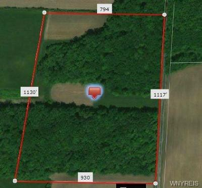 Niagara County Residential Lots & Land A-Active: County Line Road