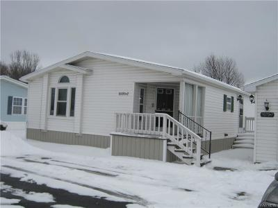 Genesee County Single Family Home A-Active: 5070 Clinton Street