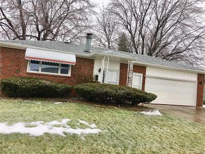 Cheektowaga Single Family Home A-Active: 34 Judith Drive