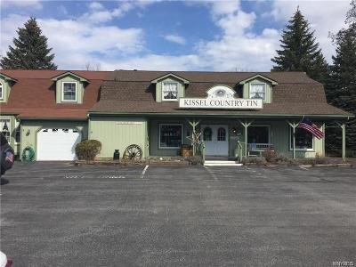 Niagara County Single Family Home For Sale: 7296 Schultz Road