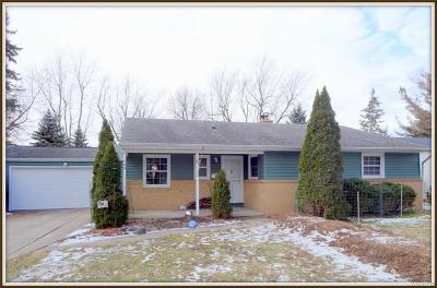 Williamsville Single Family Home A-Active: 100 Fleetwood