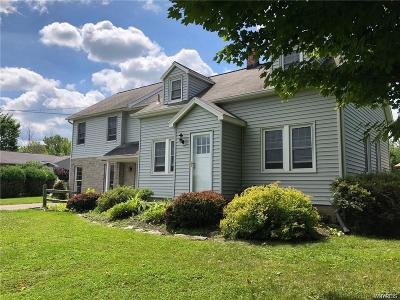 Erie County Single Family Home A-Active: 1145 Sturgeon Point Road