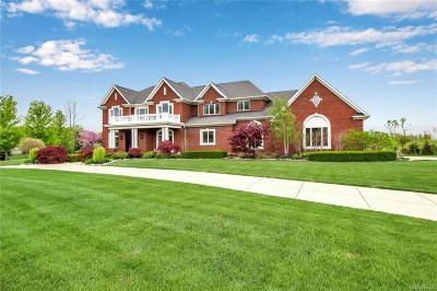 Erie County Single Family Home A-Active: 8774 Hearthstone Drive