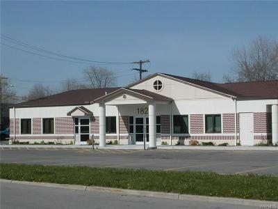 Lancaster NY Commercial A-Active: $569,900
