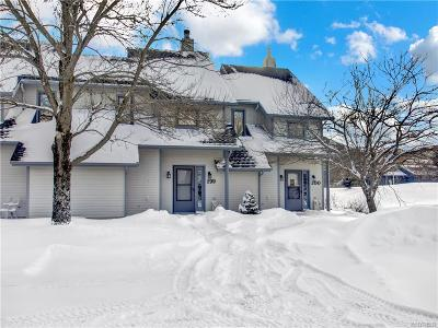 Ellicottville Condo/Townhouse For Sale: 199 Wildflower
