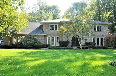 Williamsville Single Family Home A-Active: 31 Birchwood Court