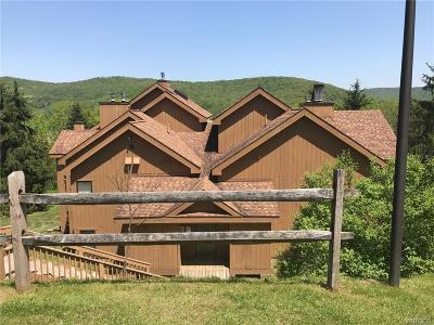 Ellicottville Condo/Townhouse A-Active: D304 Snowpine Village 5915