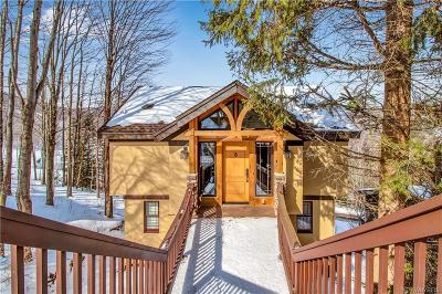Ellicottville Single Family Home A-Active: 6281 Sunset Road