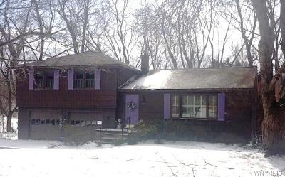 Orchard Park Single Family Home U-Under Contract: 19 North Lane