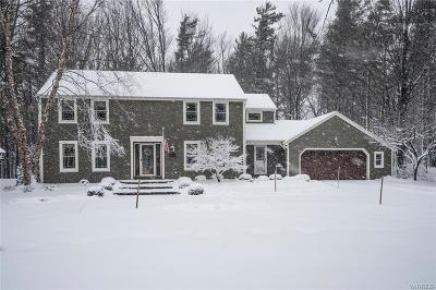 Orchard Park Single Family Home P-Pending Sale: 8 Knob Hill Road