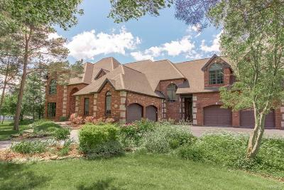 Single Family Home A-Active: 9110 Thompsonwood Drive