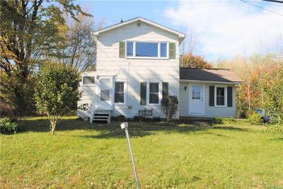 Angola Single Family Home A-Active: 9590 Erie Road