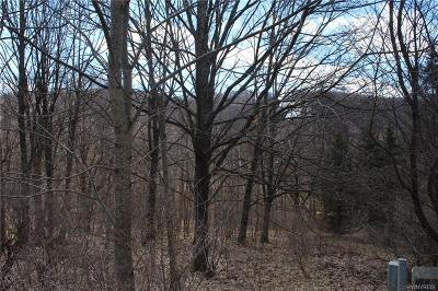 Ellicottville Residential Lots & Land A-Active: 6877 Springs Road