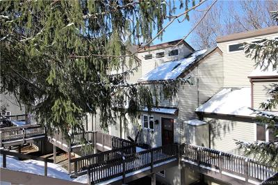 Ellicottville Condo/Townhouse A-Active: 26 Valley Village Road