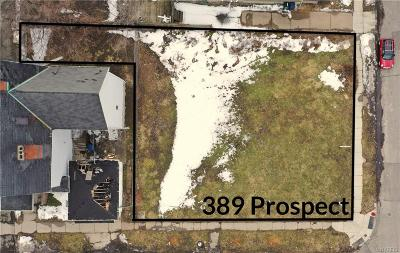 Buffalo Residential Lots & Land A-Active: 389 Prospect Avenue
