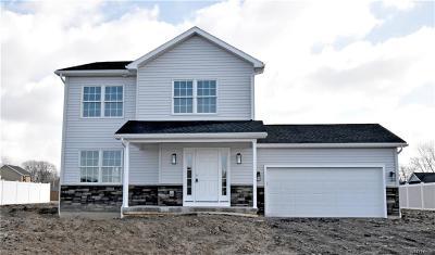 Lackawanna NY Single Family Home For Sale: $269,900