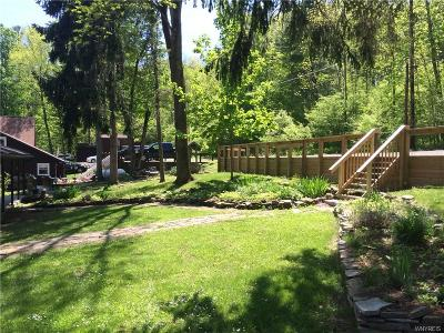 Allegany County, Cattaraugus County Single Family Home A-Active: 8186 Trail 1
