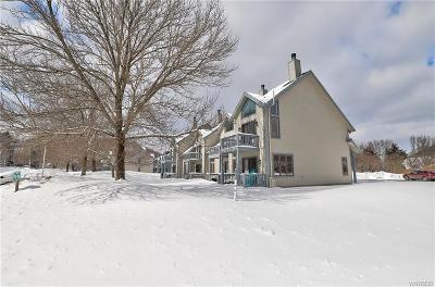 Ellicottville Condo/Townhouse A-Active: 191 Wildflower Apts