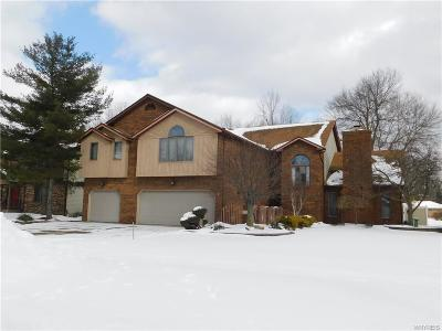 North Tonawanda Single Family Home A-Active: 77 Dimatteo Drive