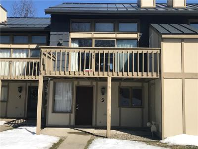 Ellicottville Condo/Townhouse A-Active: 3 Alpine